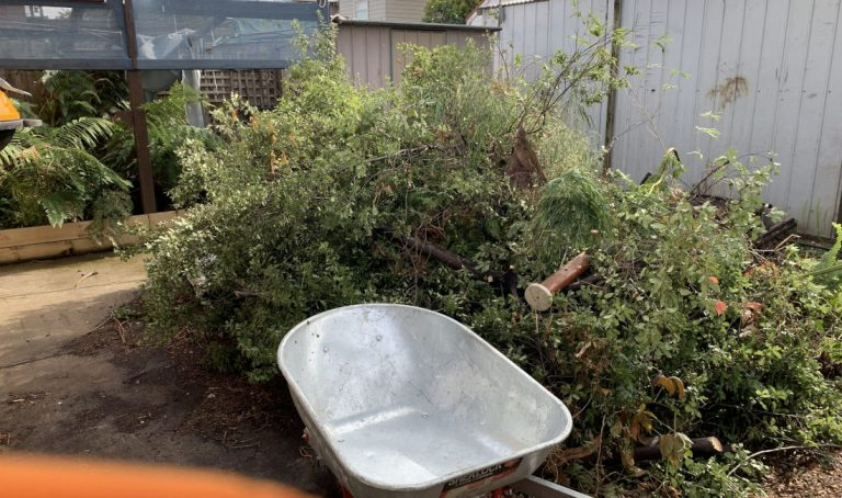 green waste rubbish removal melbourne before