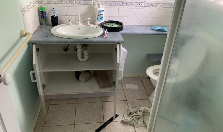 real estate bathroom rubbish before