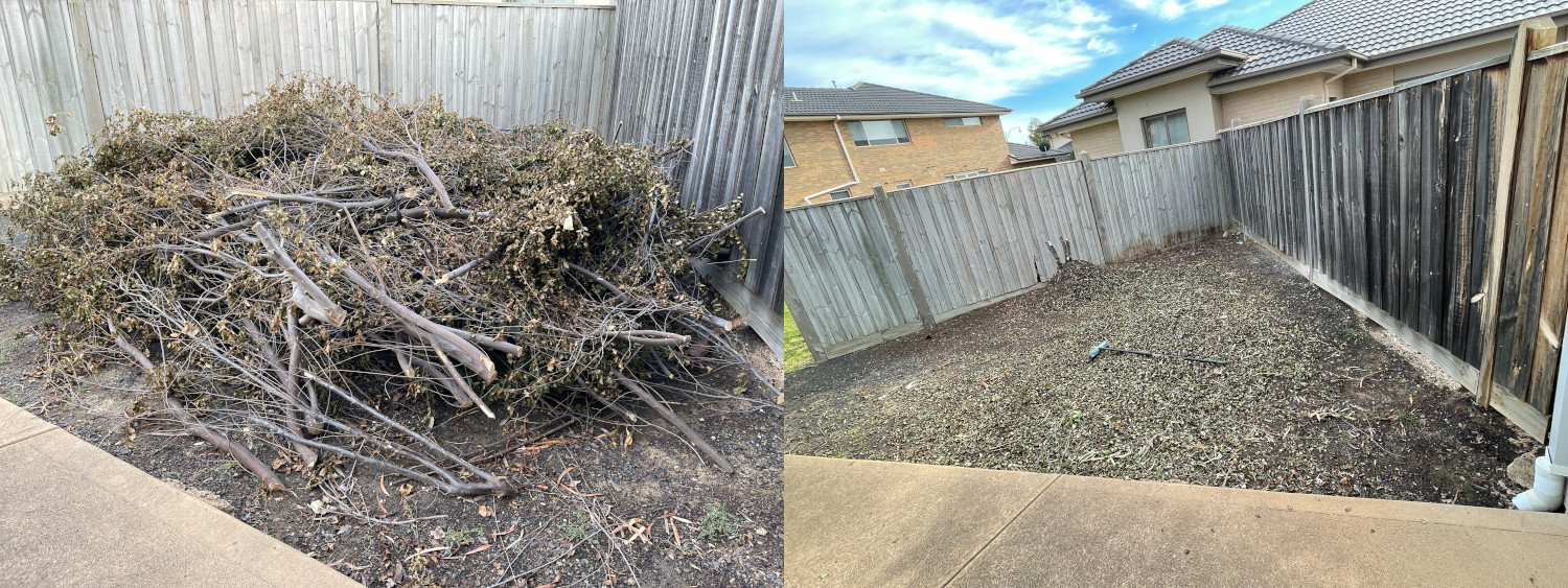 Green Waste Removal Before and After