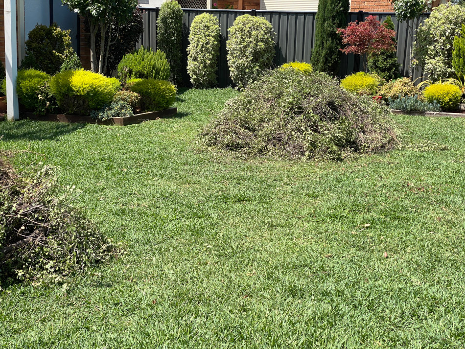 Same day green waste removal Melbourne