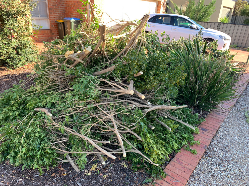 Green Waste Removal Point Cook