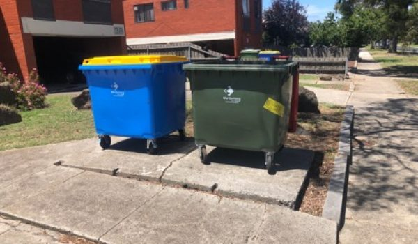 Commercial Rubbish Removal Bin After