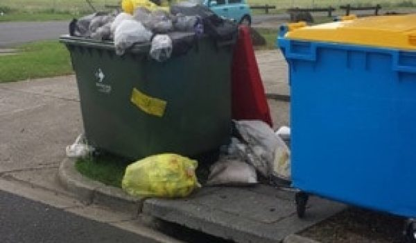 Commercial Rubbish Removal Bin
